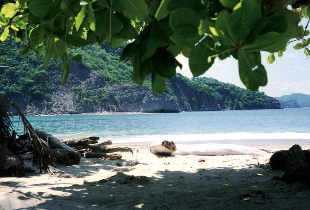 Imagen Costa Rica 848725347 38Ac4Bbacd B