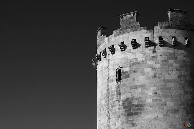 Torre della leonessa