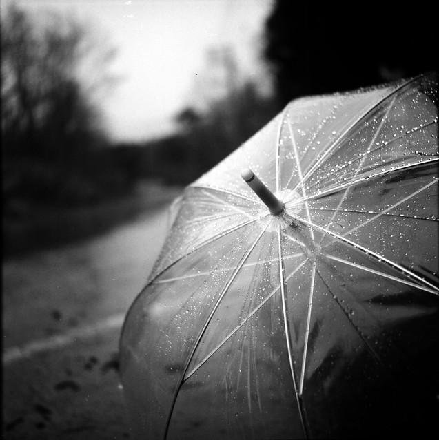 外は小雨、心の中は大雨。