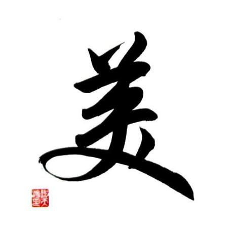 chinese symbol for beauty calligraphy painting the