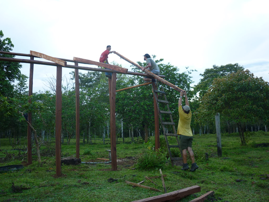 Three workers lift and set in place a beam used to support the roof of the enclosure.   Read 'Panthera's Guide to Building a Livestock Corral' from our October 2010 newsletter at www.panthera.org/november-2010-newsletter.  Learn more about the work Panthera's Costa Rica team is doing at pantheracostarica.org/.   Also read about our jaguar conservation work in other countries through our Jaguar Corridor Initiative - www.panthera.org/programs/jaguar/jaguar-corridor-initiative - and Pantanal Jaguar Project - www.panthera.org/programs/jaguar/pantanal-jaguar-project.    © Josephine Dusapin