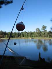Hidden Meadow Ranch Fishing Pole