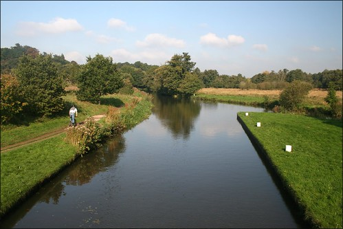 The River Wey near Guildford