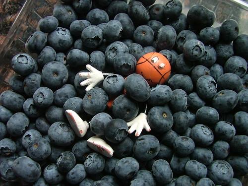 Basketballman McDuck