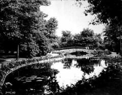 Lily Pond at Como Park - 1910