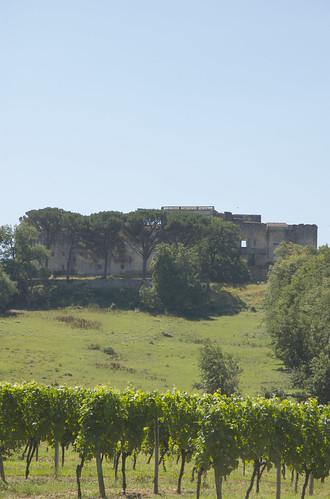 Gironde 18.jpg