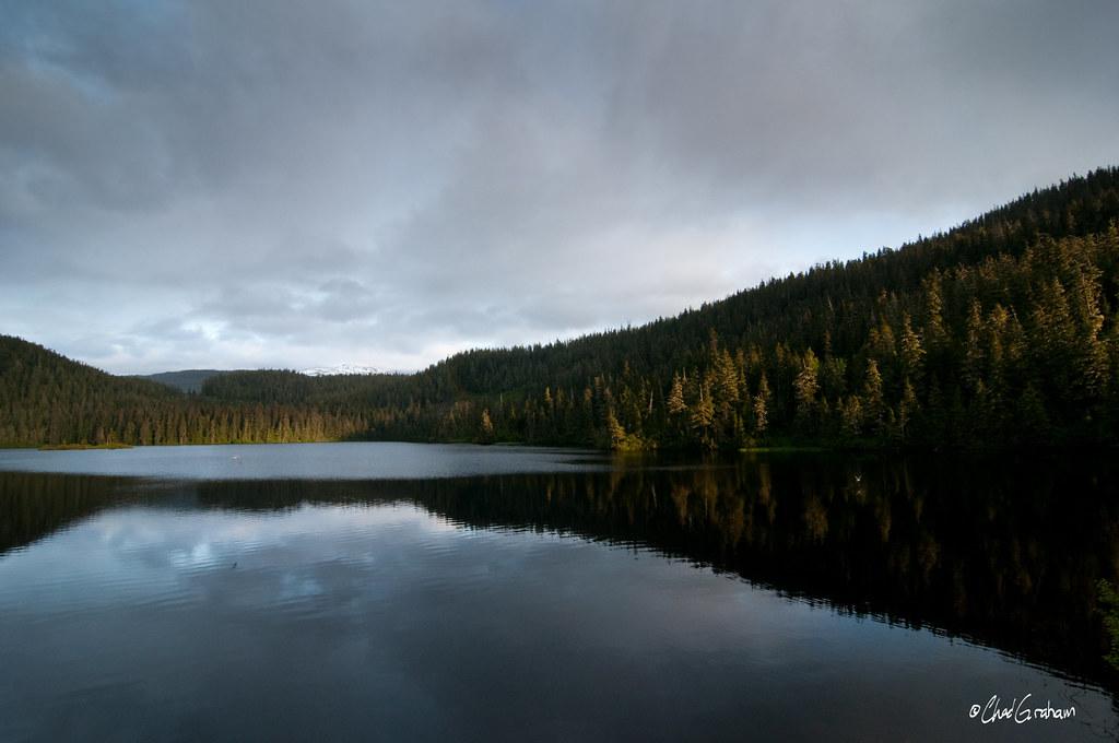 Озеро и ели
