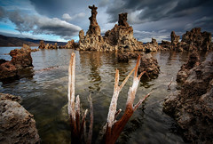 Mono Lake Ca, Still The Way