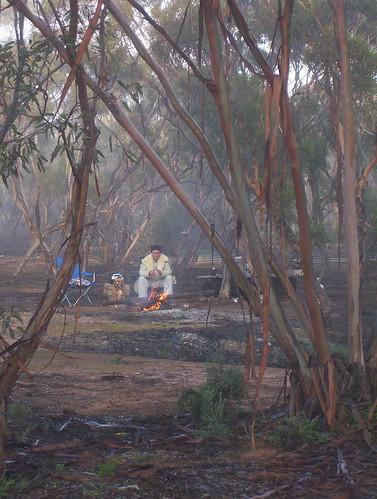 In the Australian bush