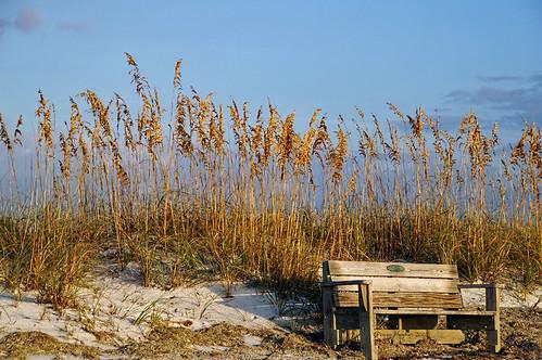 park fab sky sand florida peggy tgif quotation honeymoonisland woodenbench seagrasses ©allrightsreserved latedaylight omot anawesomeshot quote3 ©peggyhughes