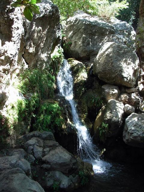Solstice Cyn Trails 024