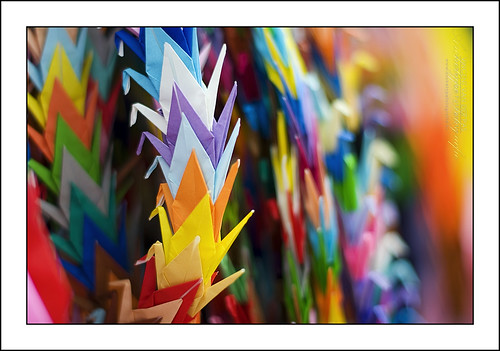 Colours of Peace