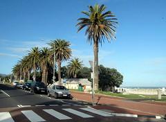 South Africa. Cape Peninsula
