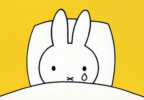Miffy-Holland