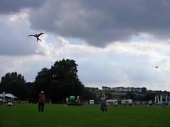 toy(0.0), sports(1.0), windsports(1.0), wind(1.0), kite(1.0), flight(1.0),