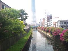 東京スカイツリー (26)