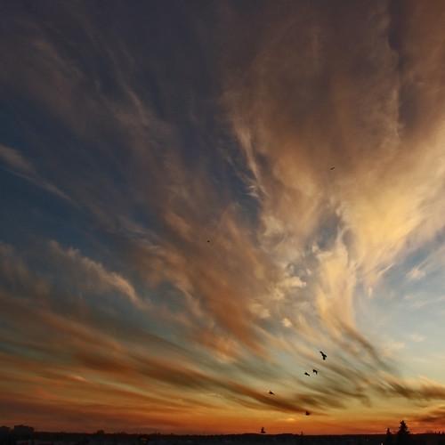 Prairie Sunsets (vertorama) by ecstaticist