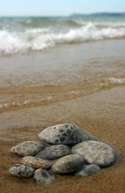 petoskey stones on the beach
