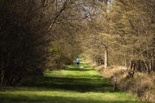 Spring Day Stroll
