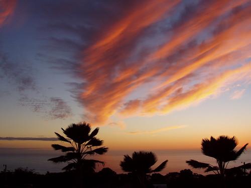ocean trees sunset sea home beautiful clouds hawaii glorious palmtrees pacificocean bigisland lanai southkona kealea barryfackler barronfackler kealeahi