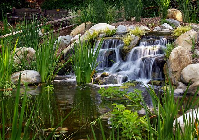 Waterfall At The Koi Pond Flickr Photo Sharing