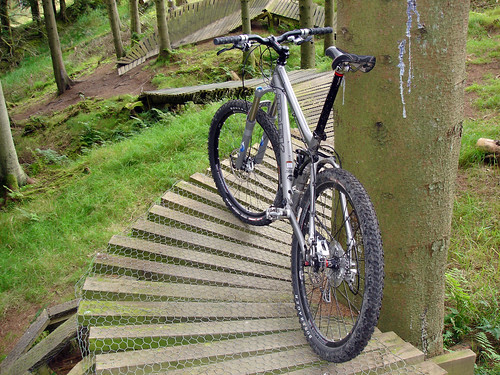 Mountain Biking in the Borders