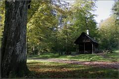 Grillhütte am Glemsbrunnen