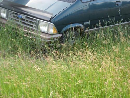 ford minivan