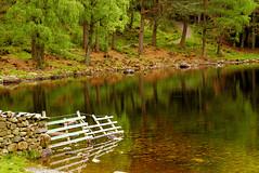 Lakes 2007_S04200