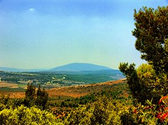 Mount Tavor in the Galilee by vad_levin, on Flickr