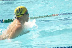 water polo(0.0), open water swimming(0.0), freestyle swimming(0.0), individual sports(1.0), swimming(1.0), sports(1.0), recreation(1.0), outdoor recreation(1.0), swimmer(1.0), water sport(1.0), breaststroke(1.0),