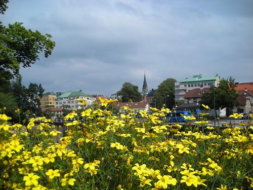 sweden 2007 borås utata:project=tw71 södrabro