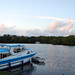 Small photo of Salhouse Broad