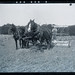Early 1900s farming scene - horse drawn reaper / harvester by whatsthatpicture