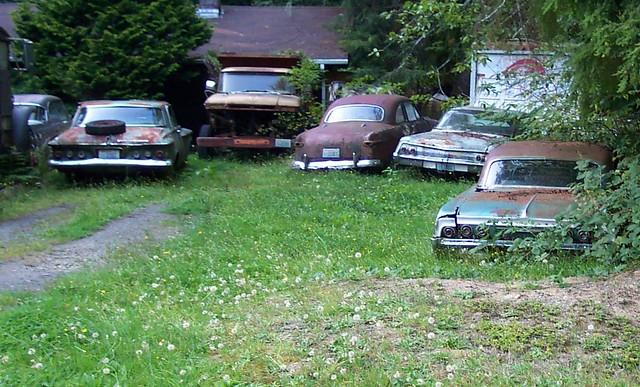 golf  tuning kadett  coupe mercedes oldtimer cabrio slammed sk mini cooper coupe  animal