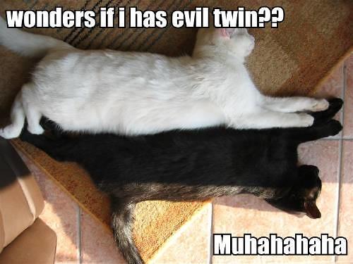 wonders-if-i-has-evil-twin-muhahahaha