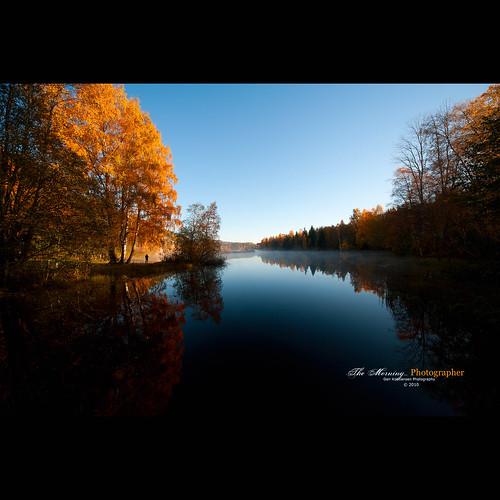 morning autumn lake cold reflection fall water colors silhouette sunrise still nikon angle dam wide sigma 1224mm vann lier høst 美丽 buskerud tjern 秋季 damtjern 性质 sigma1224mmf4556 d700 nikond700