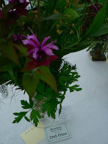 alternative herbs