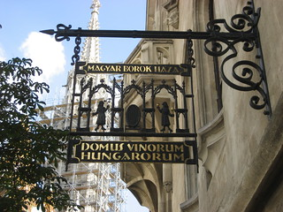 Domus Vinorum Hungarorum