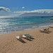 Wailea Beach First View by Oldvidhead
