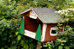 outdoor structure(0.0), fauna(0.0), birdhouse(1.0), green(1.0), bird feeder(1.0),