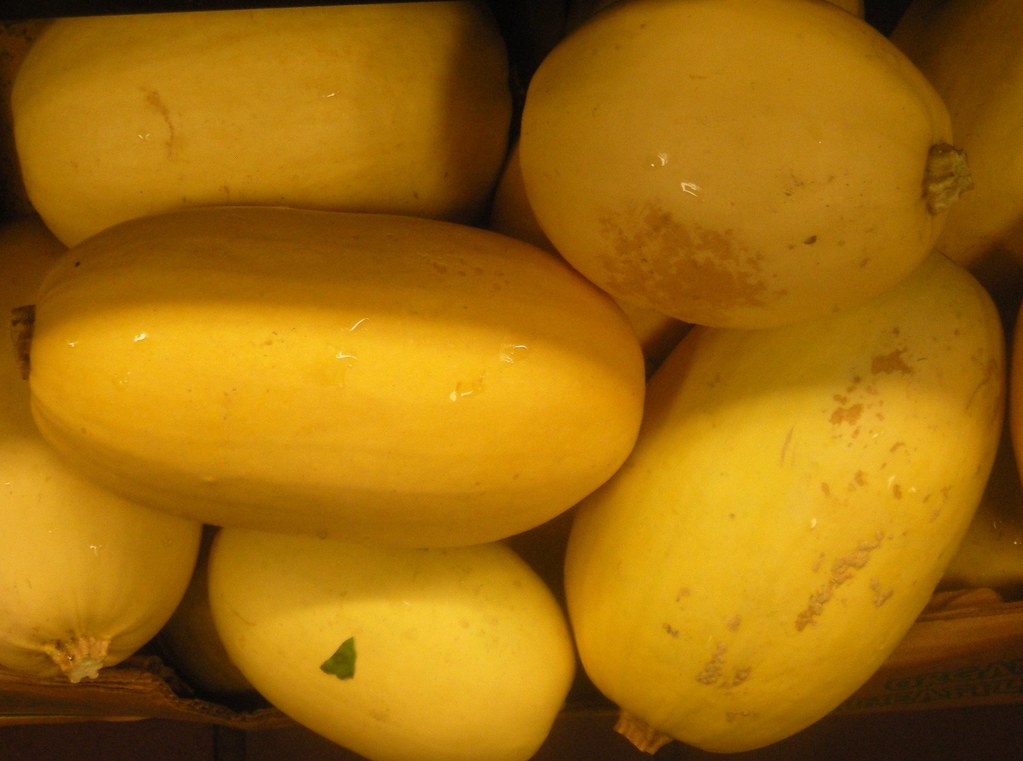 spaghetti squash winter, cooked, boiled, drained, or baked, without salt