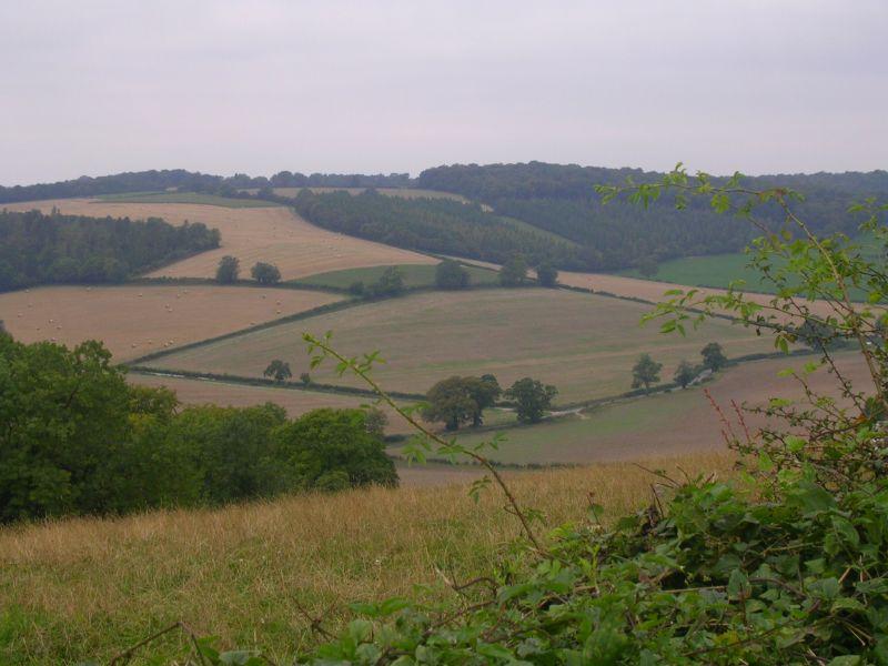 Chilterns view Henley Circular via Stonor