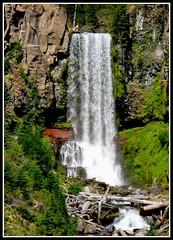 O my Oregon
