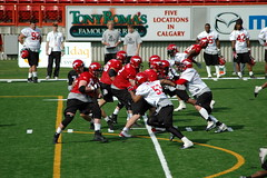 american football, sport venue, sports, team sport, tackle, player, gridiron football, ball game, arena football, canadian football, stadium, team,