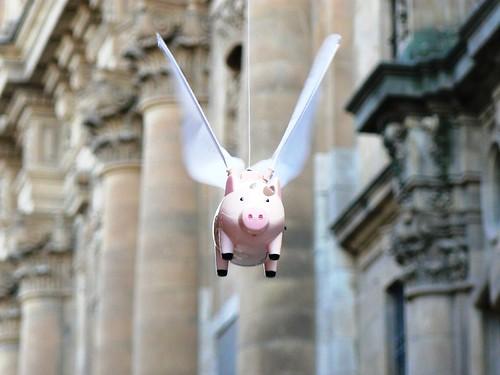 Cerdo volando