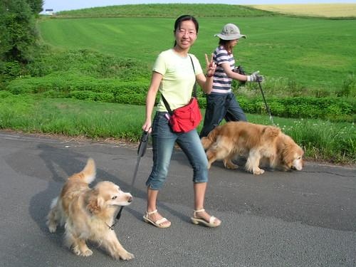 一直拉著我們走的狗狗