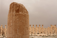 Ruined column in Palmyra