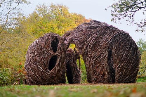 Alien Versus Elephant