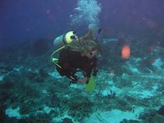 maryruth scuba